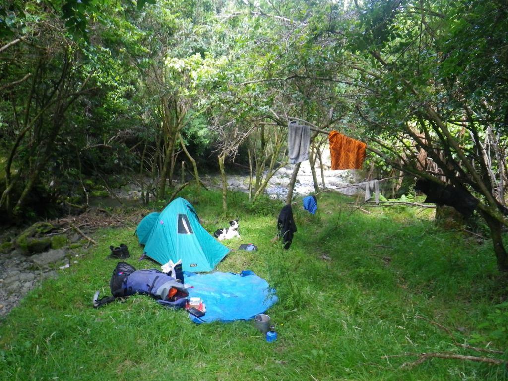 New Zealand Campsites Bay Of Islands