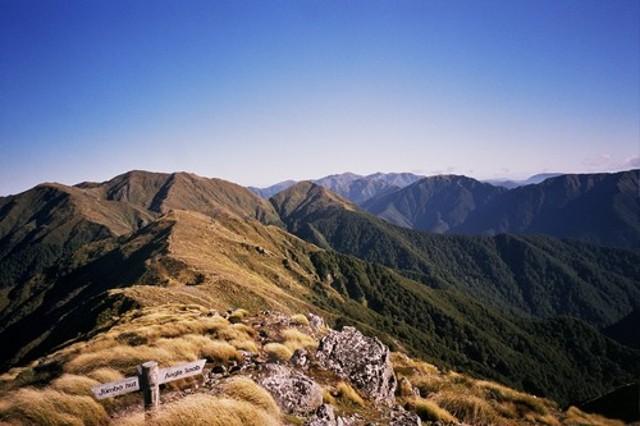 Jumbo-Holdsworth Ridge (from Jumbo)