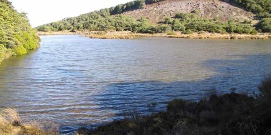 Lake Suprise