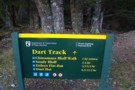 Rees dart track