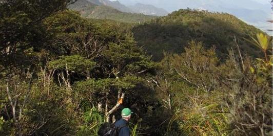 From Pukekohatu looking South along the Kaimai Range
