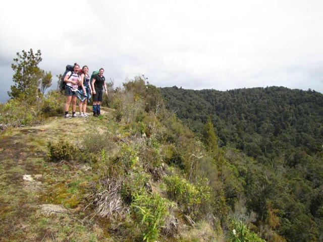 High point on the Wairoa Track