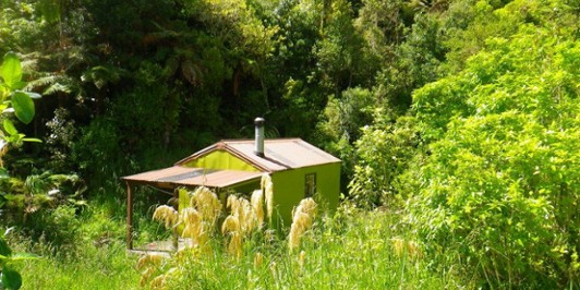 Forks Hut (Ruahine Ranges)