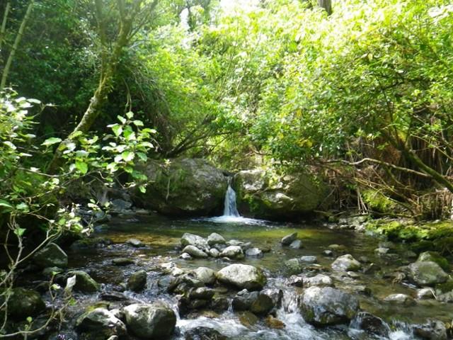 River travel above Forks Hut
