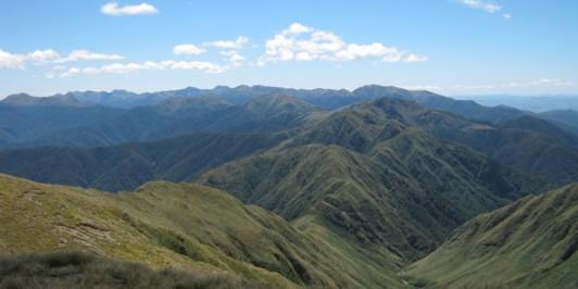 The Tararua Range