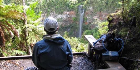Tupapakurua Falls