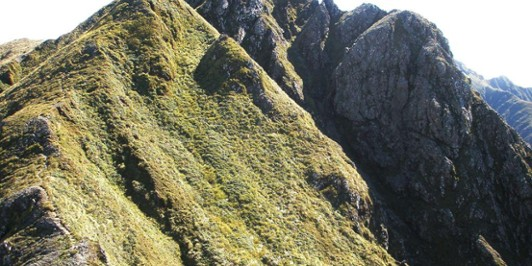 Waiohine Pinnacles