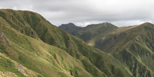 Saddle between East Peak and West Peak Northern Tararua
