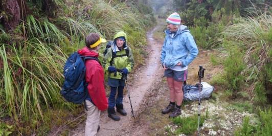 The track up Whakapoungakau