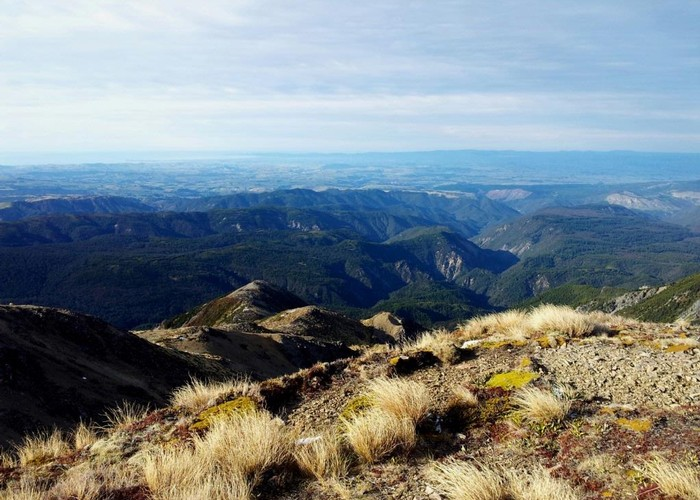 Eastern Kawekas from Kaweka Summit