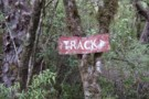 Another old track sign July 2012