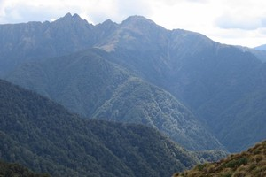 Maungahuka and the Tararua Peaks from Cone