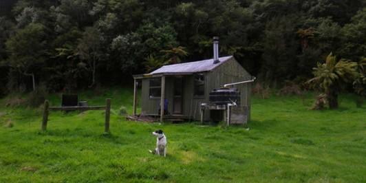 Taurawharona Hut