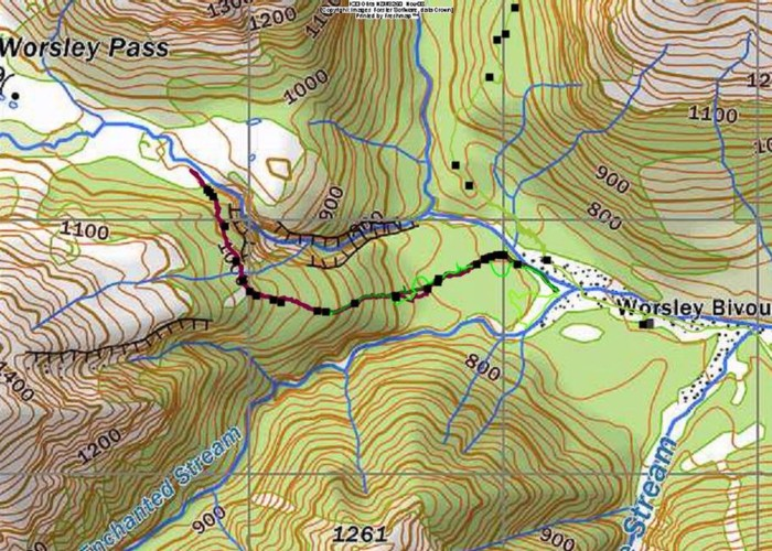NZFS track to Worsley Pass and deer trail route in Poulter Gorge