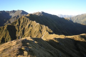 Toaroha/Zit Saddle/Kokatahi/Lathrop Saddle/Styx River Route