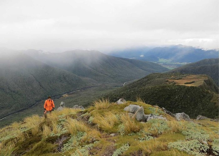 Good views from Mt Haast