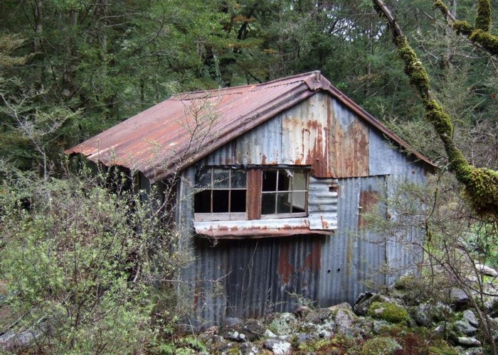 Derelict miners hut Lyell Creek  May 2014