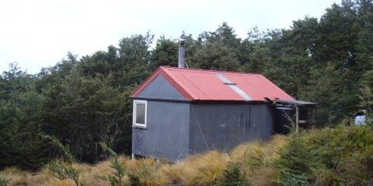 Black Hill Hut, Oxford Forest