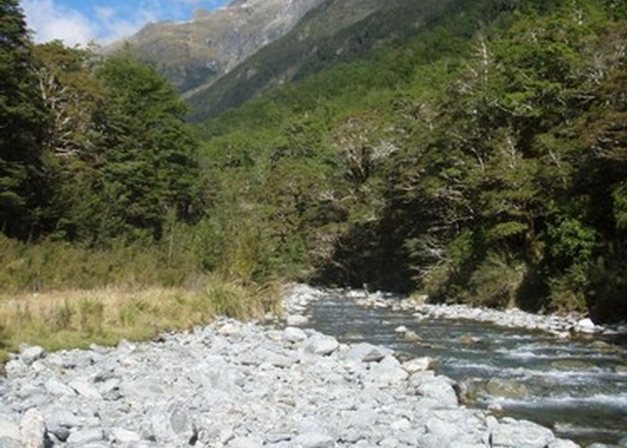route guide st arnaud to lewis pass new zealand tramper. Black Bedroom Furniture Sets. Home Design Ideas