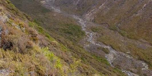 Mangahouhounui Stream