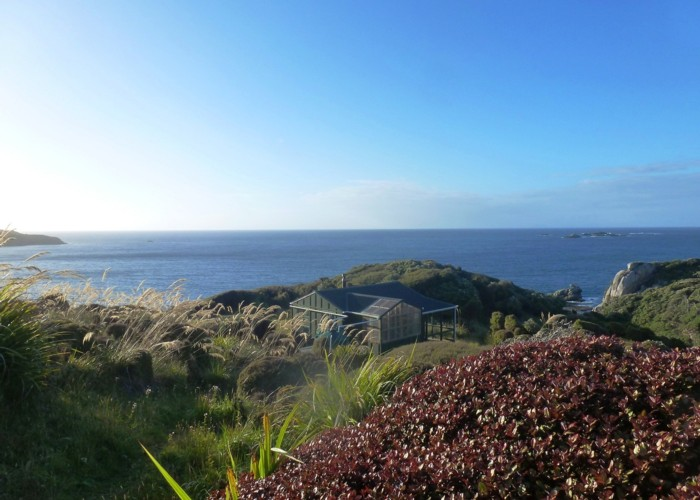 Long Harry Hut, Stewart Island