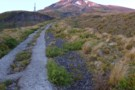 'The Puffer' - Mt Taranaki summit track