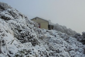 Powell Hut Mt.Holdsworth