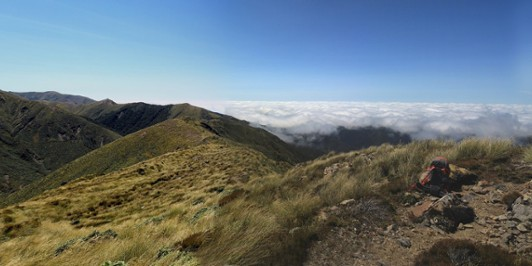 Daphne Ridge Ruahine Range