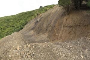 Blue Bluff Slip Otaki Forks from the bottom