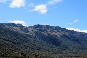Lockett Range