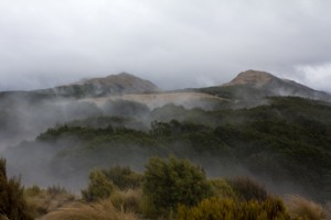 Misty morning on Bealey Spur