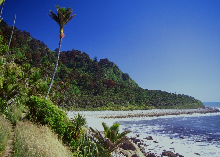 Heaphy Track coastline