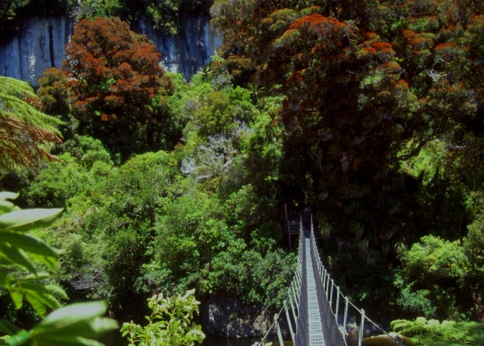 Gunner River Swingbridge, Heaphy Track
