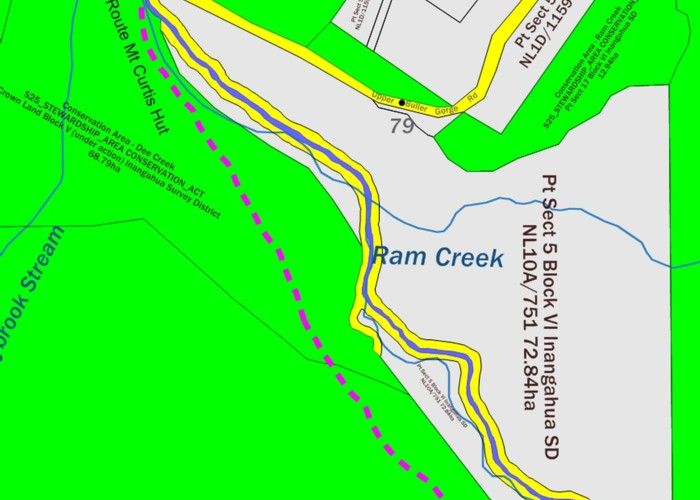 Dee Creek Track (Brunner Range)