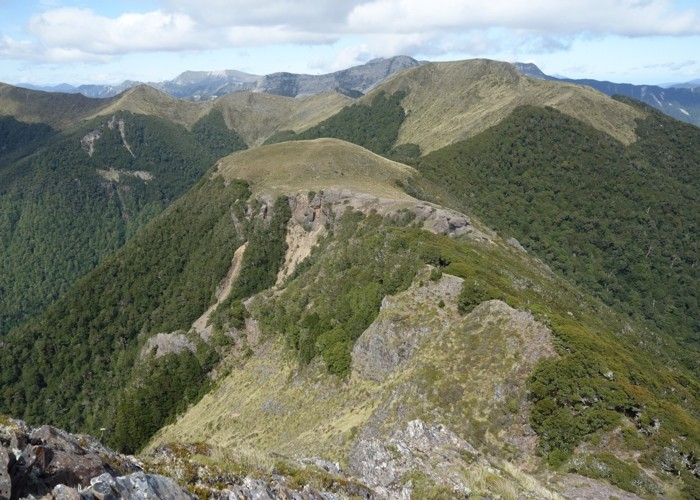 Patches of bush on Matiri Range  Dec 2017