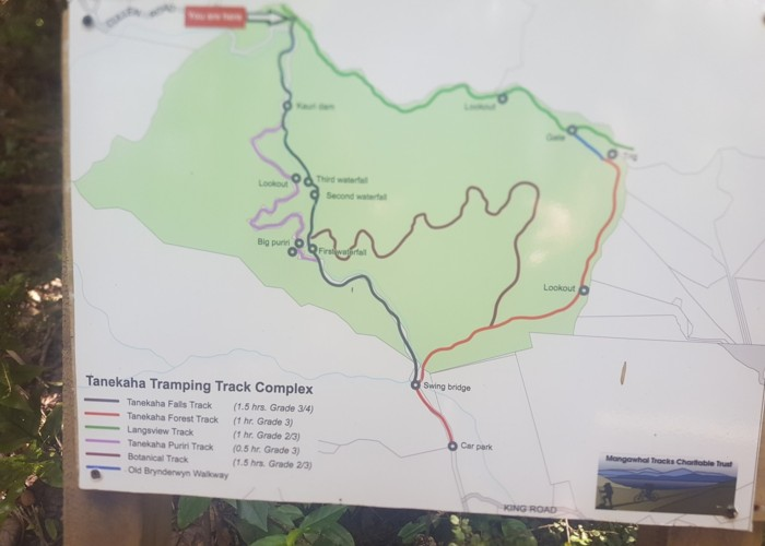 Tanekaha Tracks map