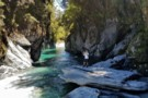 One of the gorges,the friendliest,in the Toaroha