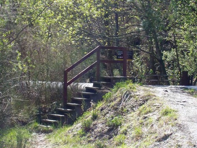 Sawpit Gully Walkway Trail Head - Bush Creek End