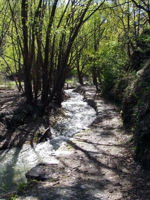 Sawpit Gully Walkway