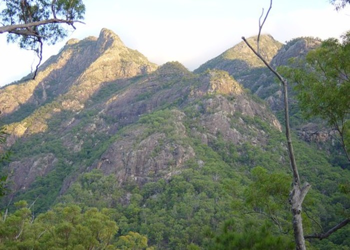 A view of Mt Barney - Qld