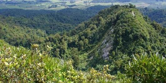 The View from Pukeatua