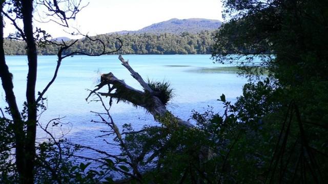 Lake Rotopounamu on an autumn morning