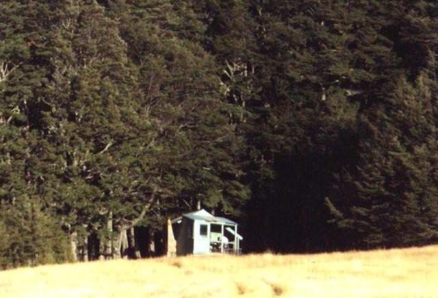 Shamrock Hut (Ahuriri)