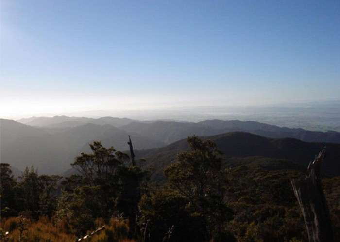 Northern Wairarapa from Mt Reeves Track