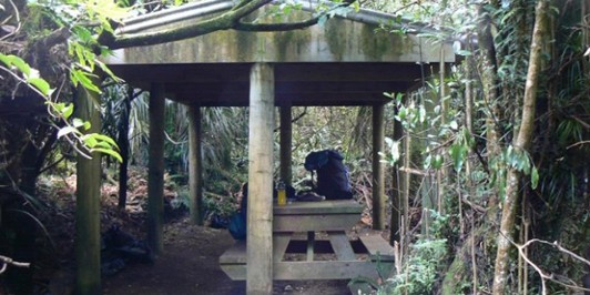 Mangakino Shelter, Kaimais