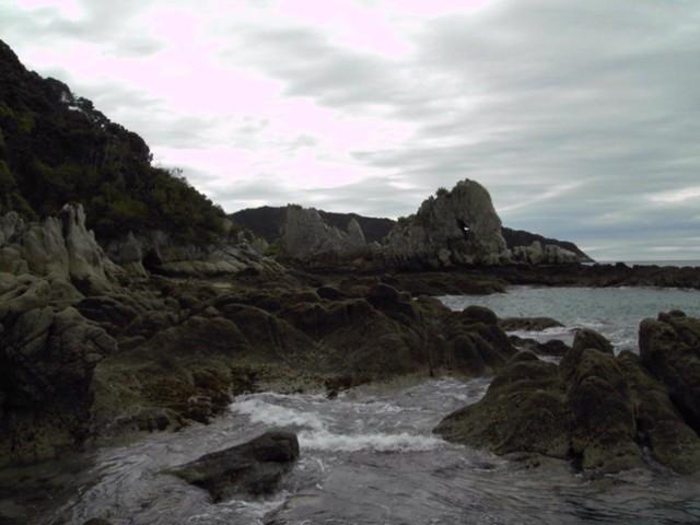 Mutton Cove south end