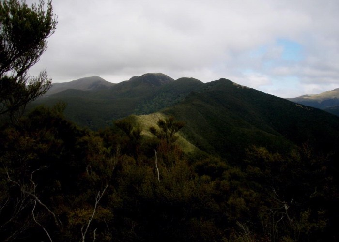 Waianakarua Scenic Reserve and Mt Fortune