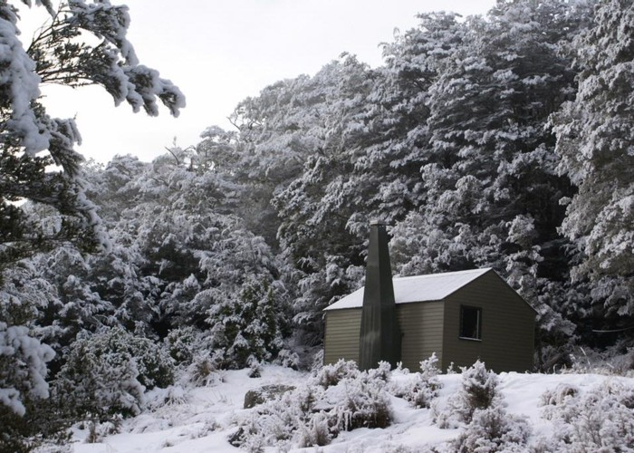 Kiwi Saddle Hut (Wangapeka)
