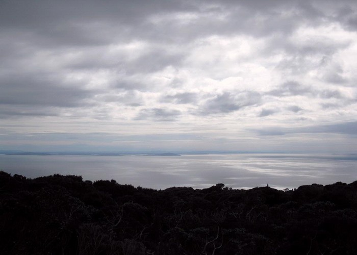 Foveaux Strait from Mt Anglem