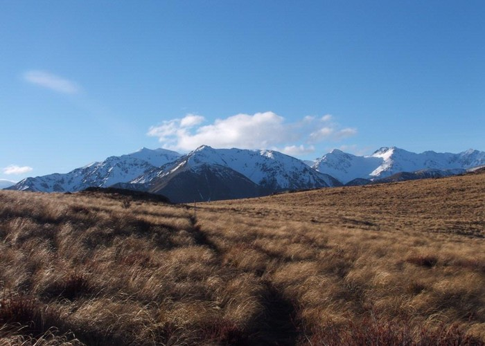 Winterslow Range from Rhyolite Track Junction